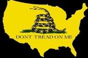 Amendment 10 court case Printz vs. US