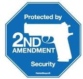 Republican view on gun control.