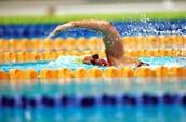Swimming, Swimming, Swimming!