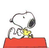 'Peanuts' comic (soon)