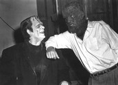 Friendship in Frankenstein
