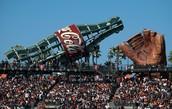 Stadium with Coke  and Glove