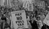North Carolina Protesters