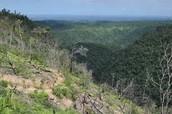 The Maya Mountains