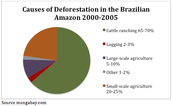 Pie graph or why deforestation in the Amazon rain forest is happening