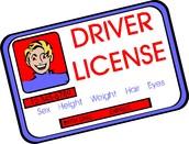 Obtuve Mí Licencia