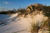 This is what dunes look like in florida...