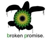 הבטחה שהופרה - נזק בלתי הפיך לטבע