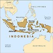 Where Does The Sumatran Tiger Live