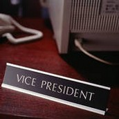 Vice President of a company