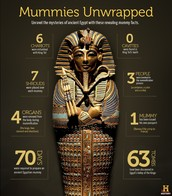 Mummies unwrapped .