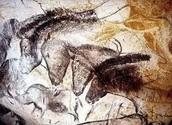 Chauvet Cave Paintings