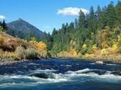 Der Rogue Fluss