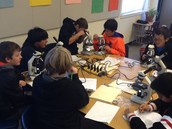 Featured department: 7th grade Science