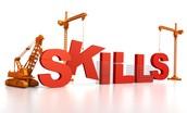 Skills & Values