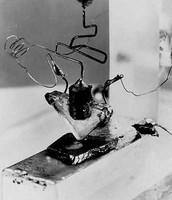 Primer Transistor (1947)