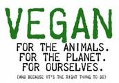 Data of veganism