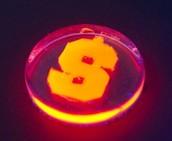 Firefly light liquid Inside mold