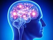 How Bipolar Disorder Impacts the Brain