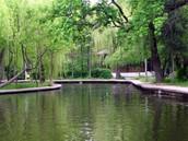 Crâng park
