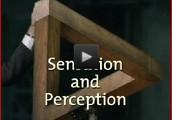 INSTRUCT: Sensation & Perception