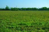 Land description-