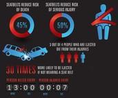 STATISTICS ABOUT SEAT BELT