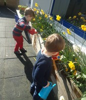 Watering our Spring flowers