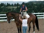 What's a Riding Instructor?