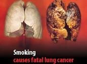 daños visibles en los pulmones de un fumador