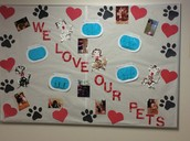 Pets are our friends too!