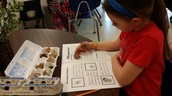 Mrs. Sprecher's student doing Rock Research
