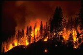 What Causes Fires
