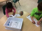 Winter Sports -emergent reader