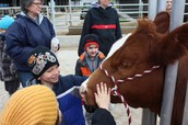 Petting the cow. (More pics on NPMLC Facebook page)