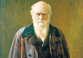 A Picture of Charles Darwin