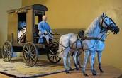 Roman Transportation