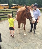 1st Grade - Equine Studies