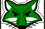 fox picture