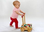 What does Physical Development look like?