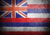 The Hawaiian flag
