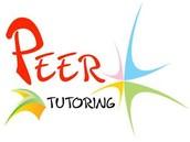 Peer/Professional Tutoring