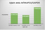 P53/GAPDH כתלות בסוג העקה.