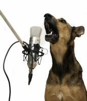 chanter !!:(
