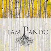 Team Pando - Our team resource wedbsite!!!