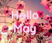 May week 1 Leader check in!