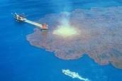 1991 Gulf War Oil Spill