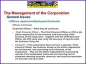 Management Issues for Corporations
