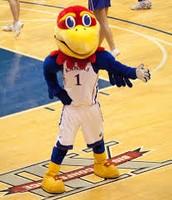 University of Kansas mascot