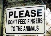 Please don't put your fingers in the animals mouths